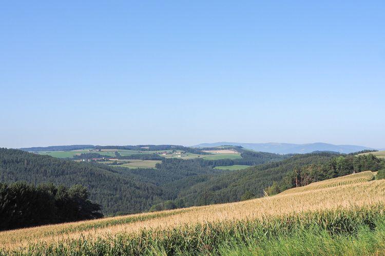 Seitensprung Purkersdorf Partnerbörse
